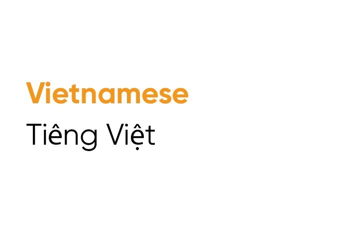Vietnamese Tile
