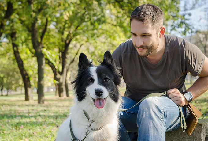 Man and his dog playing in a park